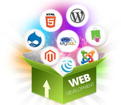 Bespoke Web Development in Cork, Ireland