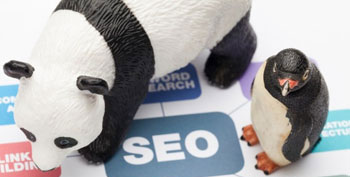 Google Panda & Penguin Recovery Services